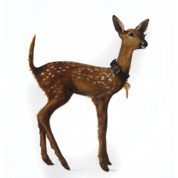 Dorion Scott - Untitled (fawn)