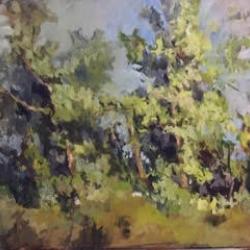 Masood Omer -   Land and trees 1