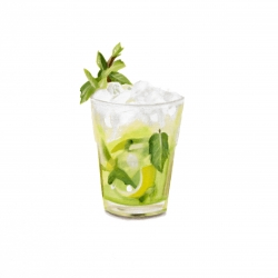 Erin Rothstein - Tasting Room - Mojito