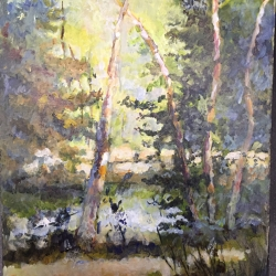 Masood Omer - Light in Algonquin Park