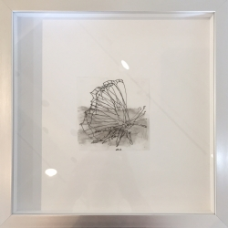 Daniel Schneider - Butterfly