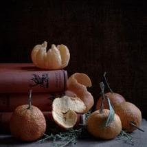 Kristin  Sjaarda - Oranges and Books