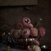 Kristin  Sjaarda - Ranunculus - teapot and unicorn