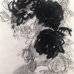 Rundi Phelan - Seeking Clarity