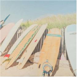 Patrick Lajoie - Long Boards