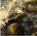 Dark Waters by Sharin  Barber