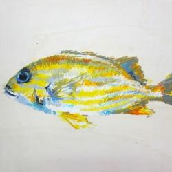 Agnieszka Foltyn - Tropische Fische 3