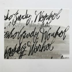 Daniel Schneider - Warhol - Small 2