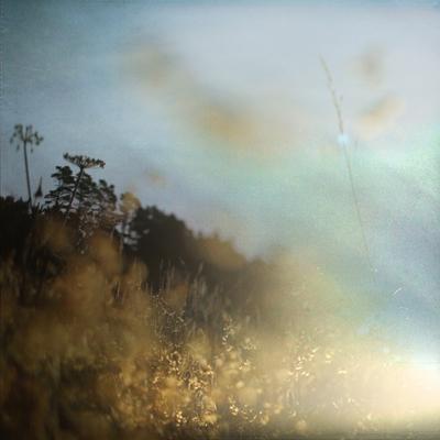 New Beginnings Happen Each Day by Charlene Serdan
