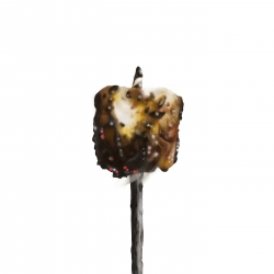 Erin Rothstein - Tasting Room Burnt Marshmallow 2