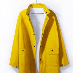 Dorion Scott - Untitled - Raincoat