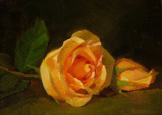 Two Roses in Orange  by Caroline Ji