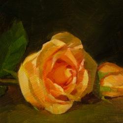 Caroline Ji - Two Roses in Orange