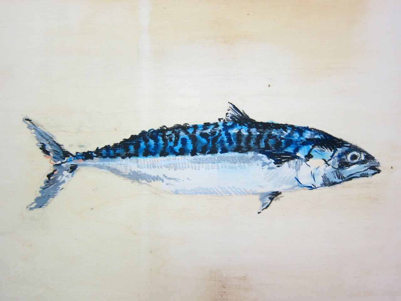Tropische Fische 4 by Agnieszka Foltyn