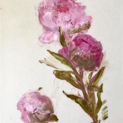 Madeleine Lamont - Pink Peonies