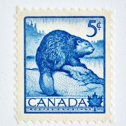 Peter Andrew - Wildlife Week Stamp- Beaver