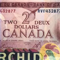 Greg Shegler - Two Dollar #8