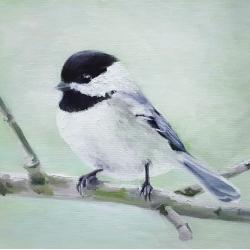 Emily Bickell - Chickadee in Spring