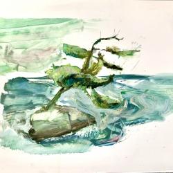 Madeleine Lamont - Lake of the Woods 2