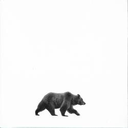 Heather  Cook  - Bear