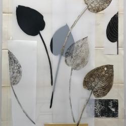 Michele Woodey - Botanical Folio 6