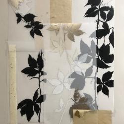 Michele Woodey - Botanical Folio 3