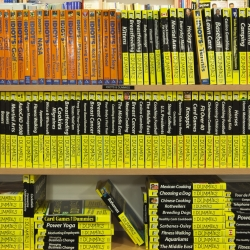 Tek Yang - Bookshelves - Idiots & Dummies I