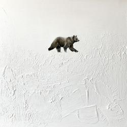 Heather  Cook  - Snowy Bear