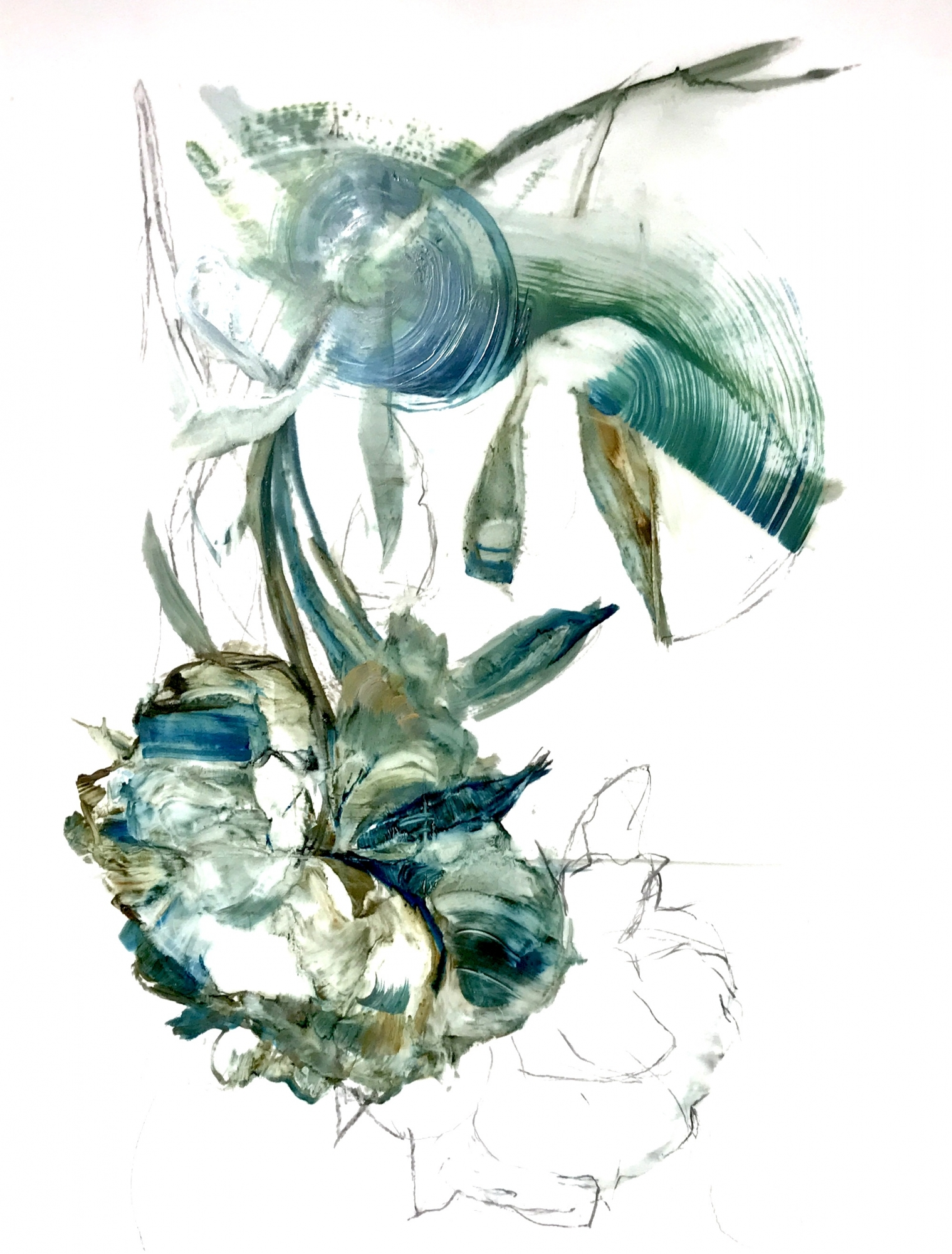 Teal Peony 2018- 5 by Madeleine Lamont