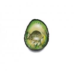 Erin Rothstein - Tasting room: avocado no pit