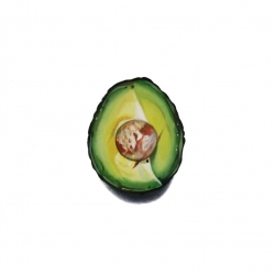 Erin Rothstein - Tasting room: avocado with pit