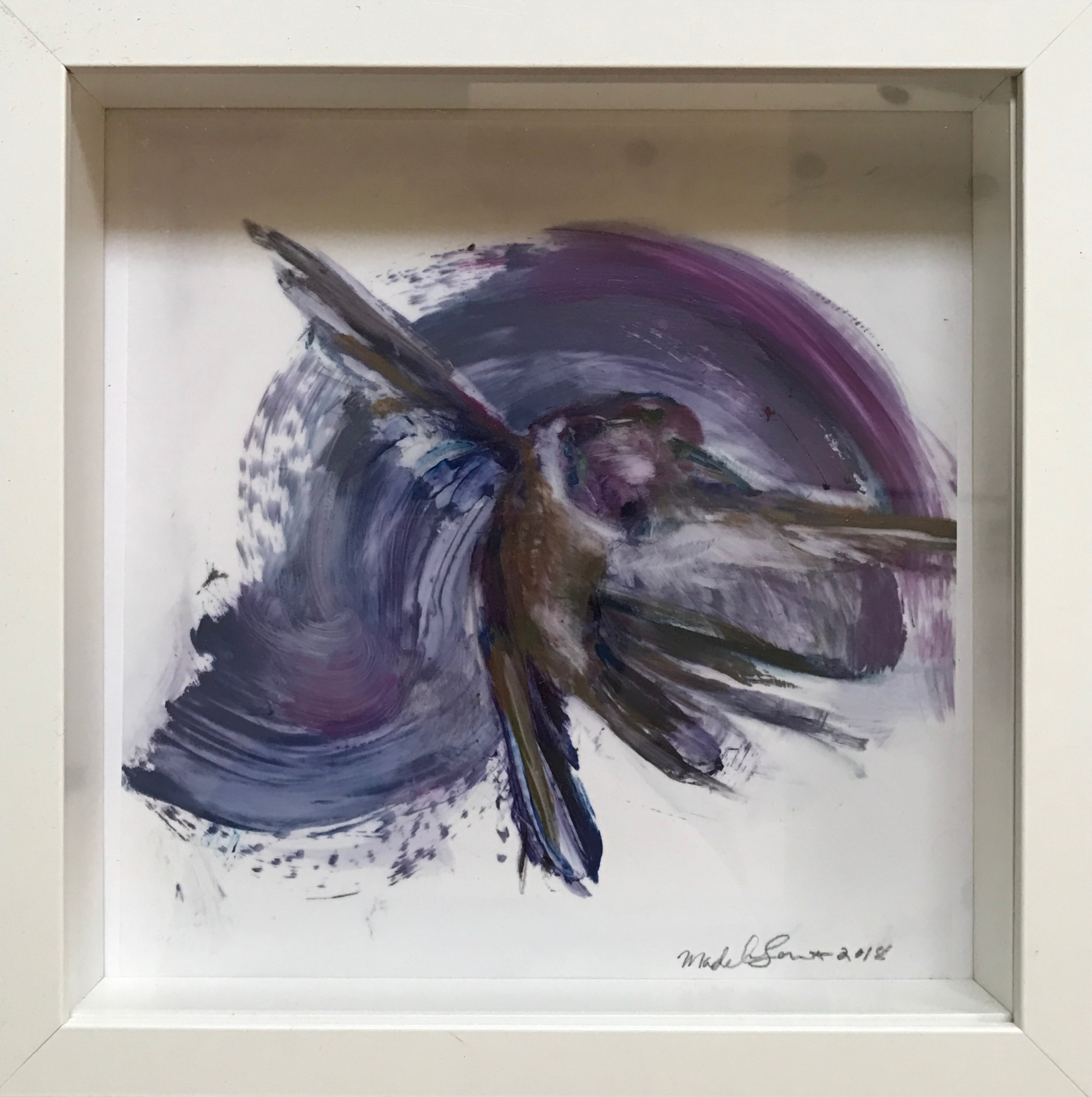 Hummingbird Small (framed) by Madeleine Lamont