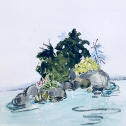 Rundi Phelan - Swim around the Island
