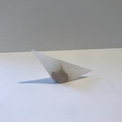 Sara  Heron - Gull (small)