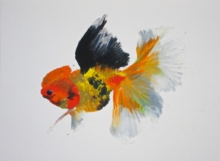 Goldfish 2 by Agnieszka Foltyn
