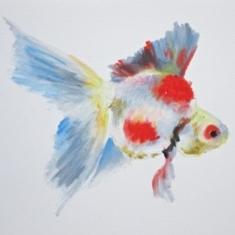 Agnieszka Foltyn - Goldfish 10