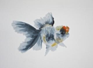 Goldfish 11 by Agnieszka Foltyn