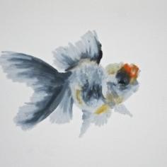 Agnieszka Foltyn - Goldfish 11