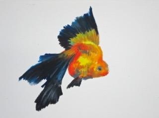 Goldfish 13 by Agnieszka Foltyn