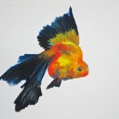 Agnieszka Foltyn - Goldfish 13