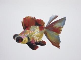 Goldfish 14 by Agnieszka Foltyn