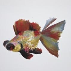 Agnieszka Foltyn - Goldfish 14
