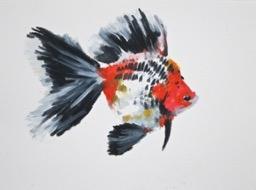 Goldfish 16 by Agnieszka Foltyn