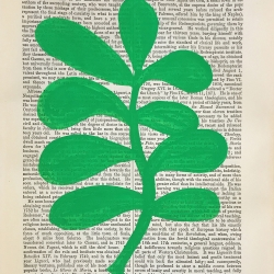 Michela Sorrentino - Liguori Green 635