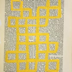 Michela Sorrentino - Mel-Mel Yellow 833