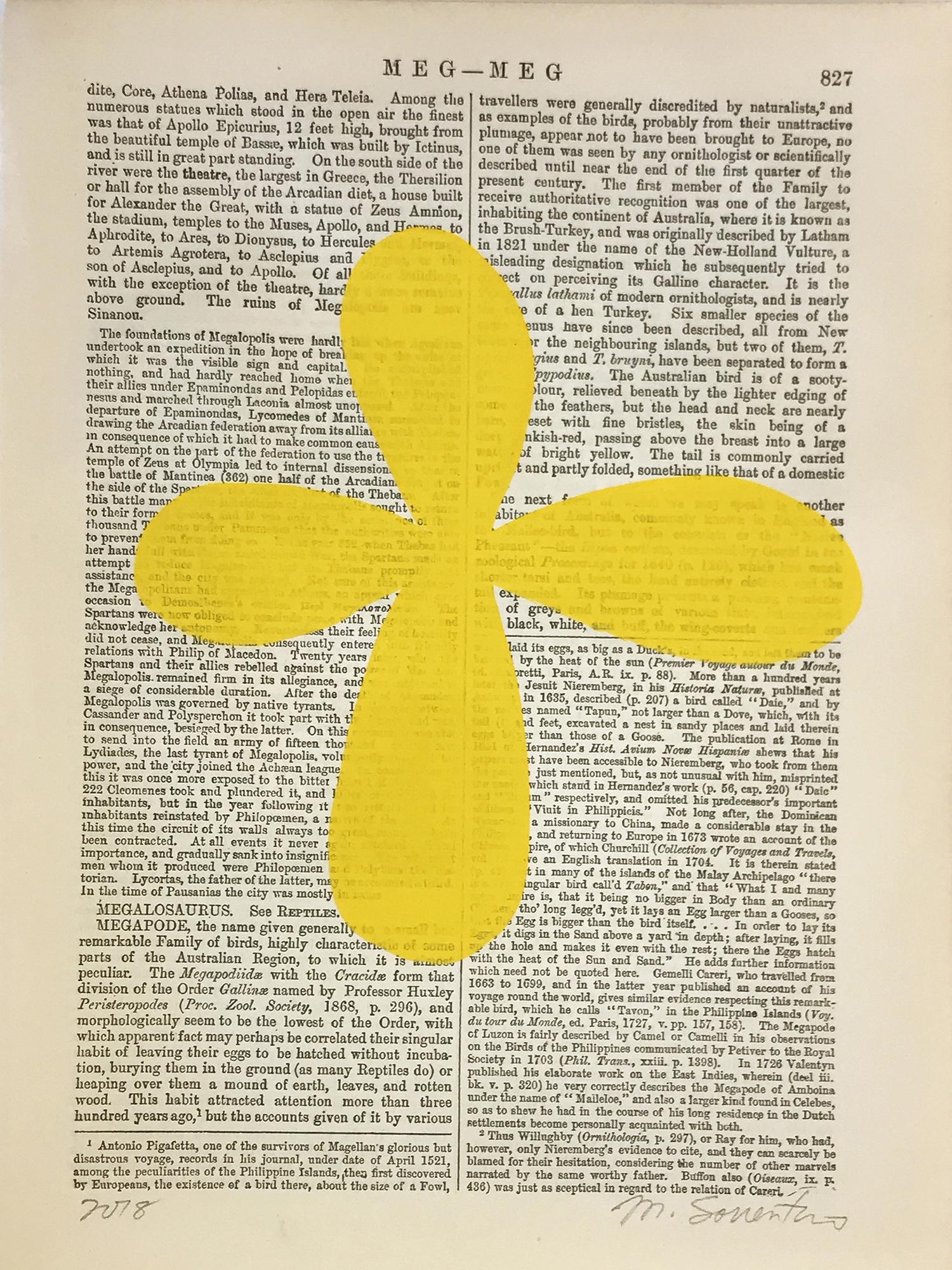 Meg-Meg Yellow 827 by Michela Sorrentino