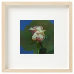 Caroline Ji - White Rose