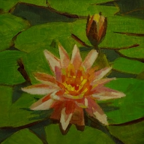 Waterlily 1 by Caroline Ji