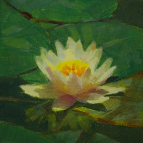 Waterlily 3 by Caroline Ji