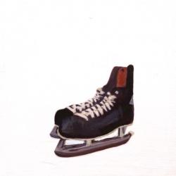 EM Vincent - Skates